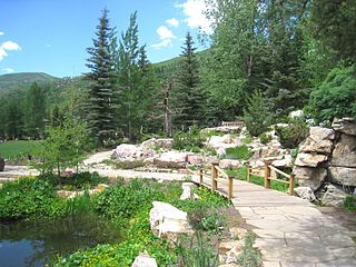 Betty_Ford_Alpine_Gardens,_Vail,_CO