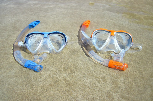 See Underwater Sea Life With The Best Snorkels for Beginners (Guide & Reviews)