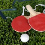 Play Table Tennis In The Yard With Outdoor Ping Pong Tables (Guide and Reviews)